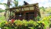 Fiji Yasawa Island rates