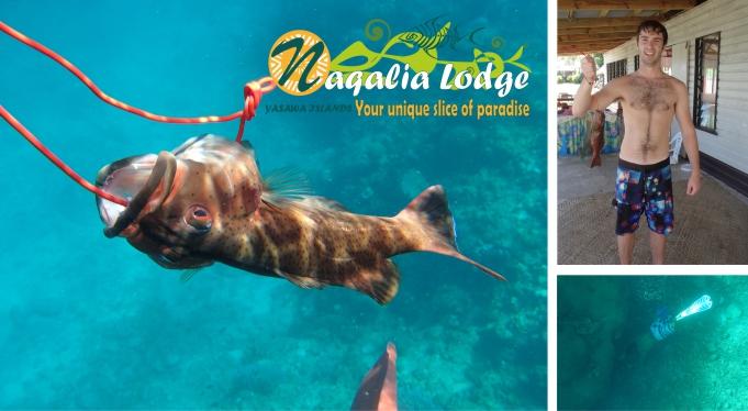 https://www.naqalialodge-fijiresort.com spearfishing