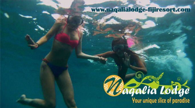 naqalialodge-fijiresort - octopus resort - fiji - yasawa islands -