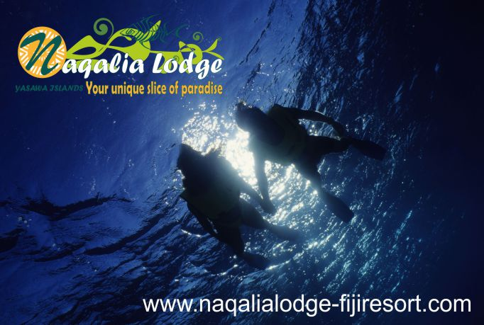 https://www.naqalialodge-fijiresort.com-scuba diving-Fiji-Mantaray resort-Naqalia Lodge-Wayalailai island