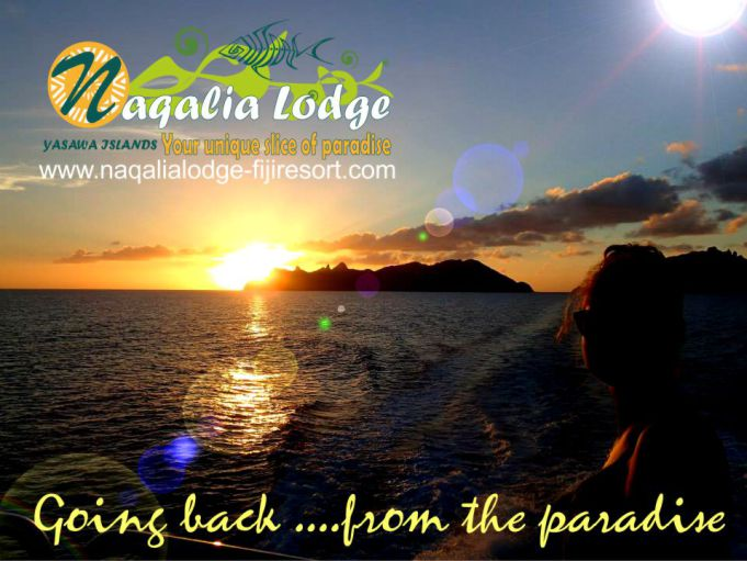 https://www.naqalialodge-fijiresort.com/ Naqalia Lodge-Octopus resort-Wayalailai-Mantaray resort-